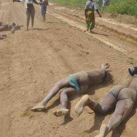 Conflicts In Uganda's Land Tenure